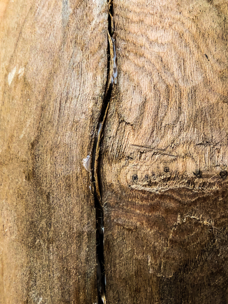 Closeup of crack in apple wood