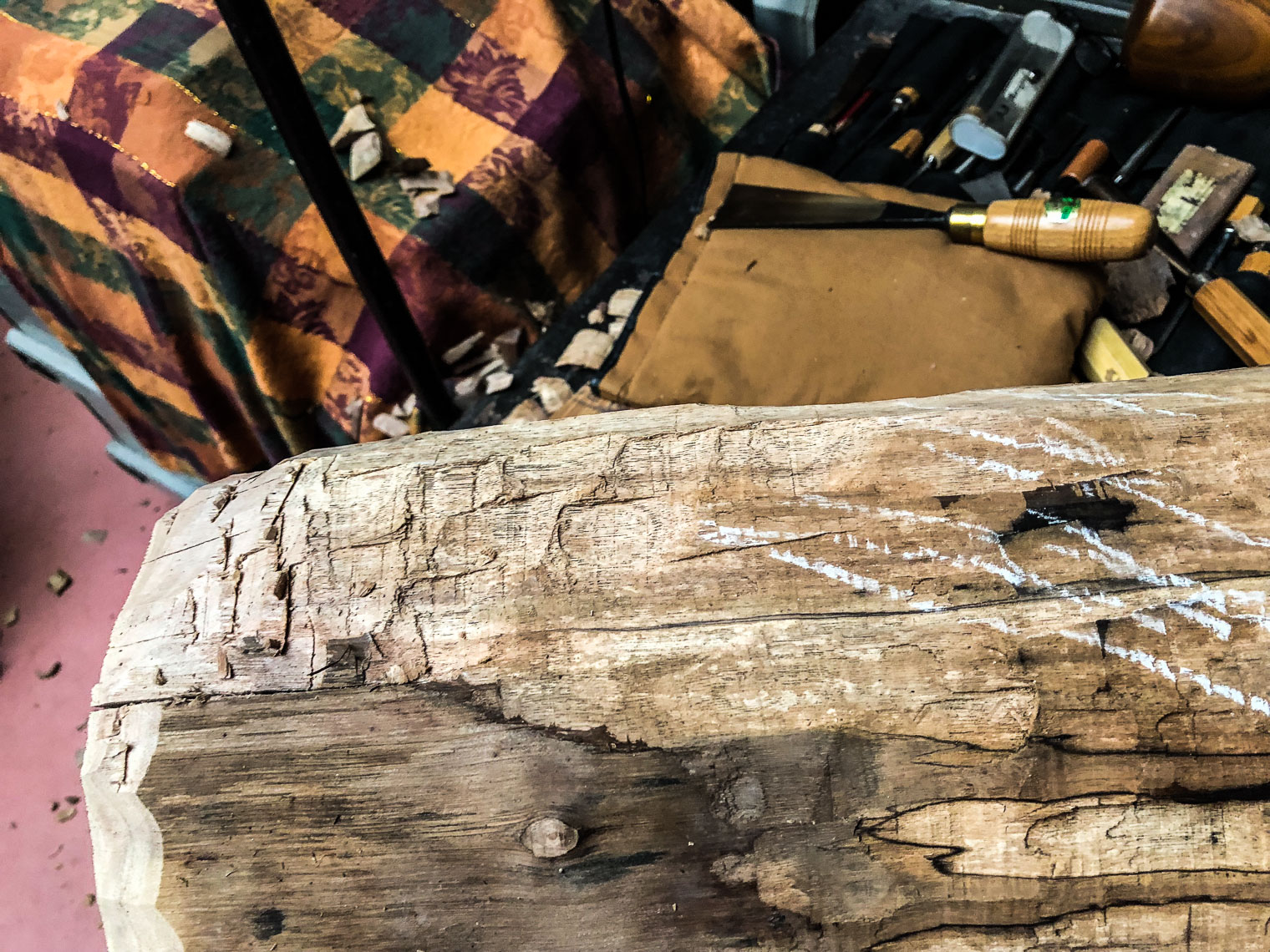 Black walnut log